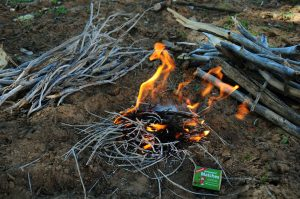 SURVIVAL BY FIRE