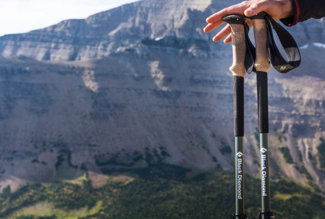 trekking poles review