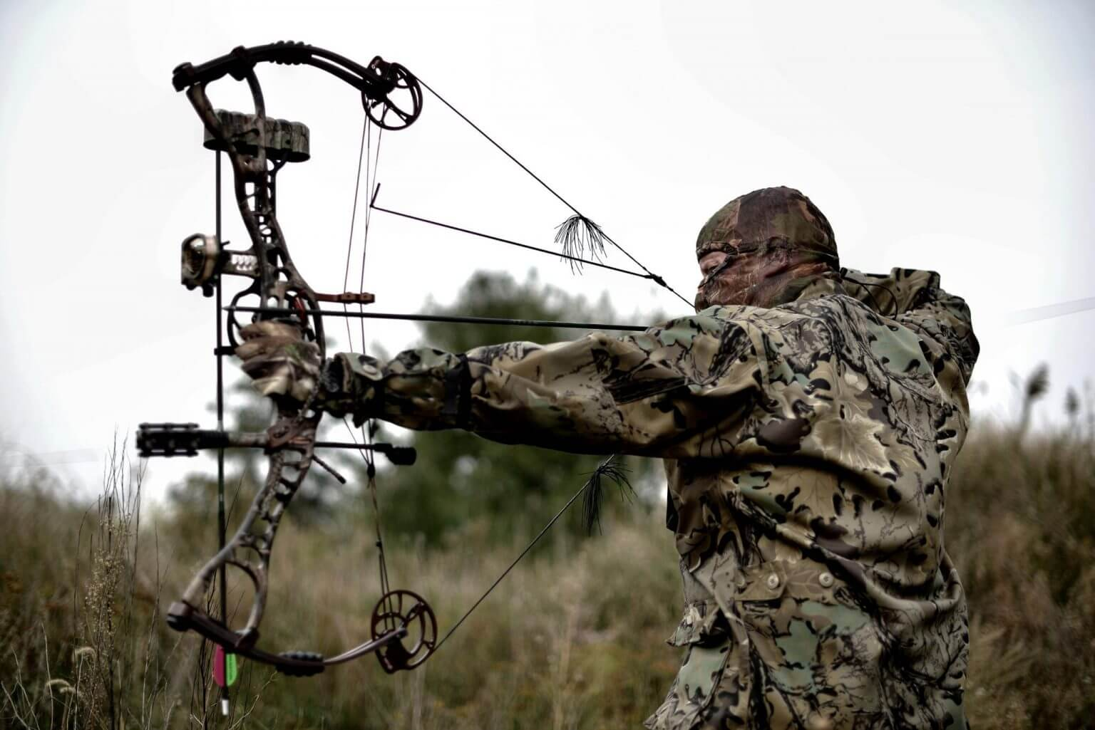 Photo of Best Beginner Compound Bow Reviews in 2020