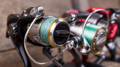 Photo of Best Saltwater Spinning Reels For The Money