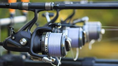 Photo of Best Spinning Reels Review & Buyer's Guide