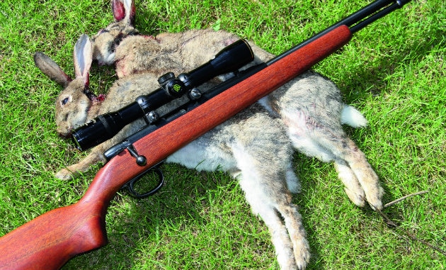 How To Choose A Rabbit Hunting Rifle Conclusion