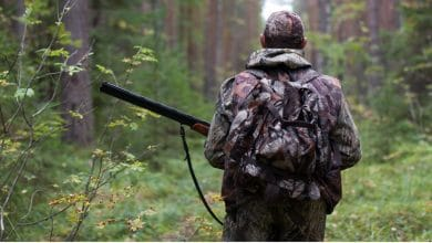 Photo of Choosing the Best Grounds for Your Hunting Expedition