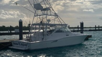 Photo of Turks and Caicos Islands' #1 Fishing Charter Company, Catchin' Caicos Fleet Swells