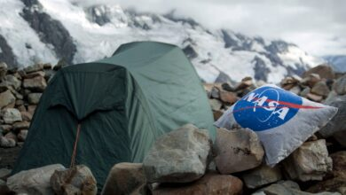 Photo of 9 Best Camping Pillows
