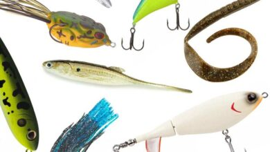 Photo of The 10 Best Bass Lures For Fishing
